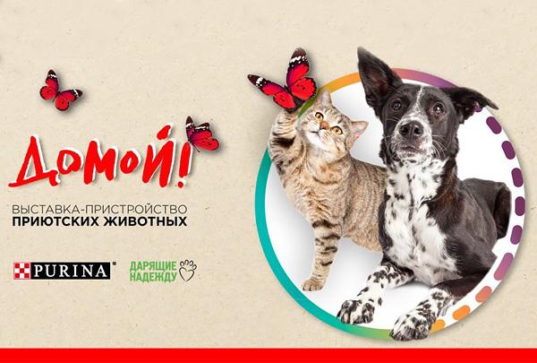 В ЦТИ «Фабрика» в Москве пройдёт очередная выставка - пристройство «Домой!»