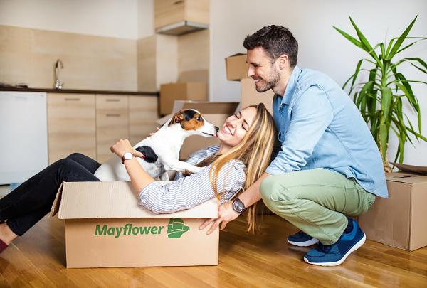Согласно опросу, домашние питомцы влияют на принятие решения о переезде и выбор нового места жительства