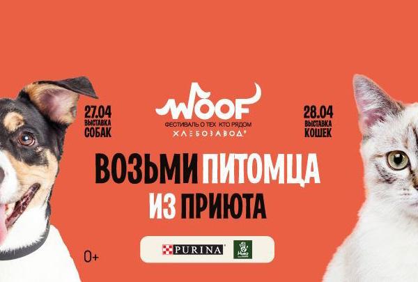На фестивале Woof в Москве 350 животных будут ждать новых владельцев