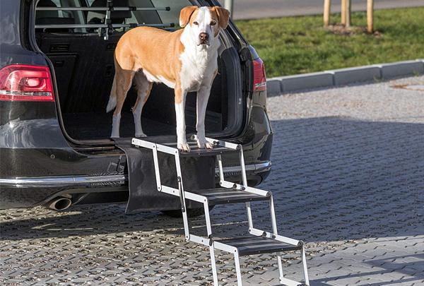 Компания «Фалкон Пет» представила пандус и лестницу для собак