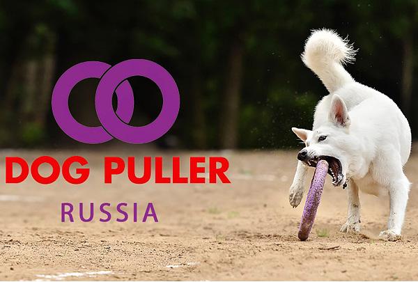 Объявлен состав сборной России на втором Чемпионате мира по Dog Puller