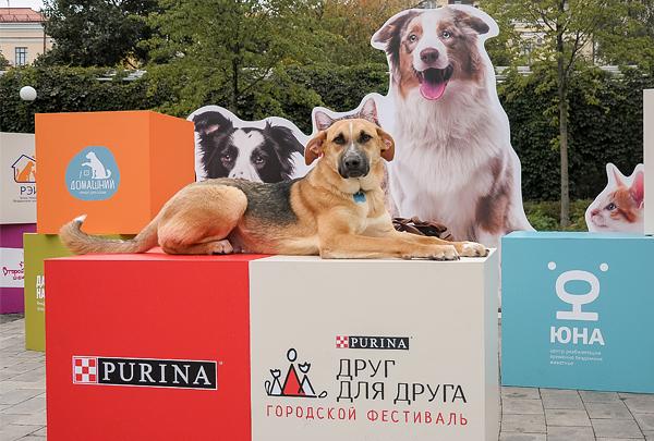В Москве прошёл фестиваль «Друг для друга»