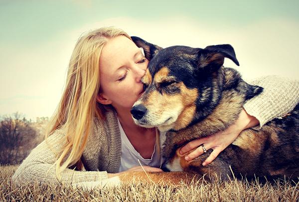 Согласно опросу, некоторые владельцы животных любят питомцев больше, чем детей