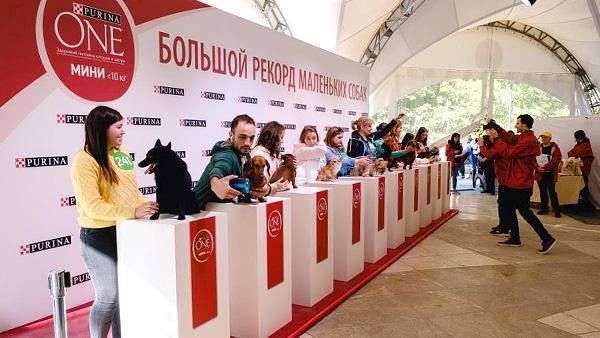 В Москве состоялась крупнейшая фотосессия собак в истории