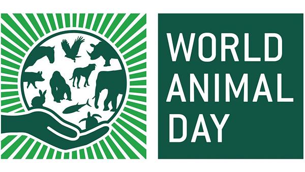 Сегодня Всемирный день животных