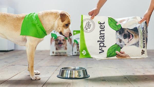 Веганские корма для собак начали продавать в Новой Зеландии