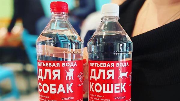 В Москве начали продавать воду для кошек и собак