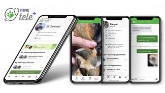 Boehringer Ingelheim представила бесплатное приложение для телемедицины