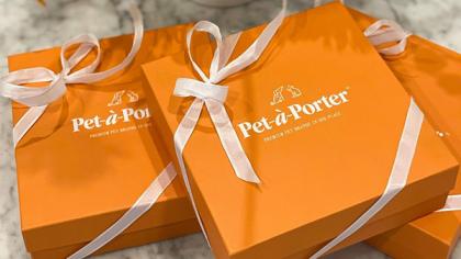 Запущена новая онлайн-платформа люксовых зоотоваров Pet-a-Porter