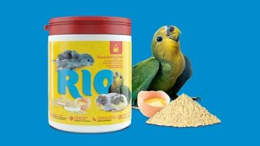 Группа компаний Mealberry выпустила корм для птенцов