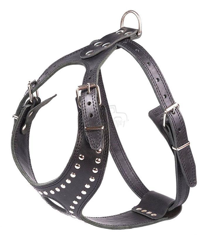 Эргономичная шлейка, учитывающая особенности бойцовских пород собак