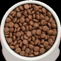 Сухой корм GRANDORF (ГРАНДОРФ) для собак Утка с бататом Все породы_1
