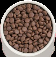 Сухой корм GRANDORF (ГРАНДОРФ) для собак Индейка с рисом Все породы_1