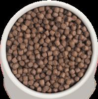 Сухой корм GRANDORF (ГРАНДОРФ) для собак Индейка с рисом Мини_1