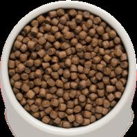 Сухой корм GRANDORF (ГРАНДОРФ) для собак Ягнёнок с рисом Мини_1