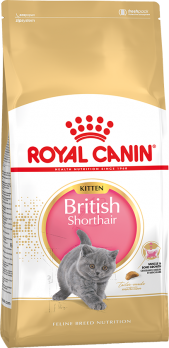 важно для развития котят-британцев