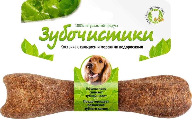 Существенное содержание кальция укрепляет кости и зубы собаки